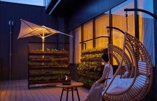 ビアガーデンの植栽/JW MARRIOTTホテル奈良(奈良県奈良市)