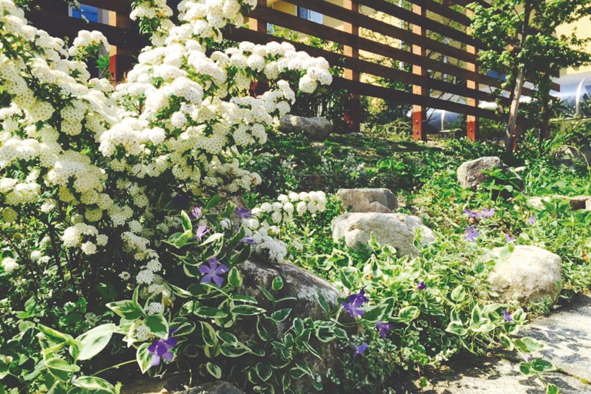 庭園設計・施工・管理 T邸フロントガーデンリフォーム(滋賀県大津市)