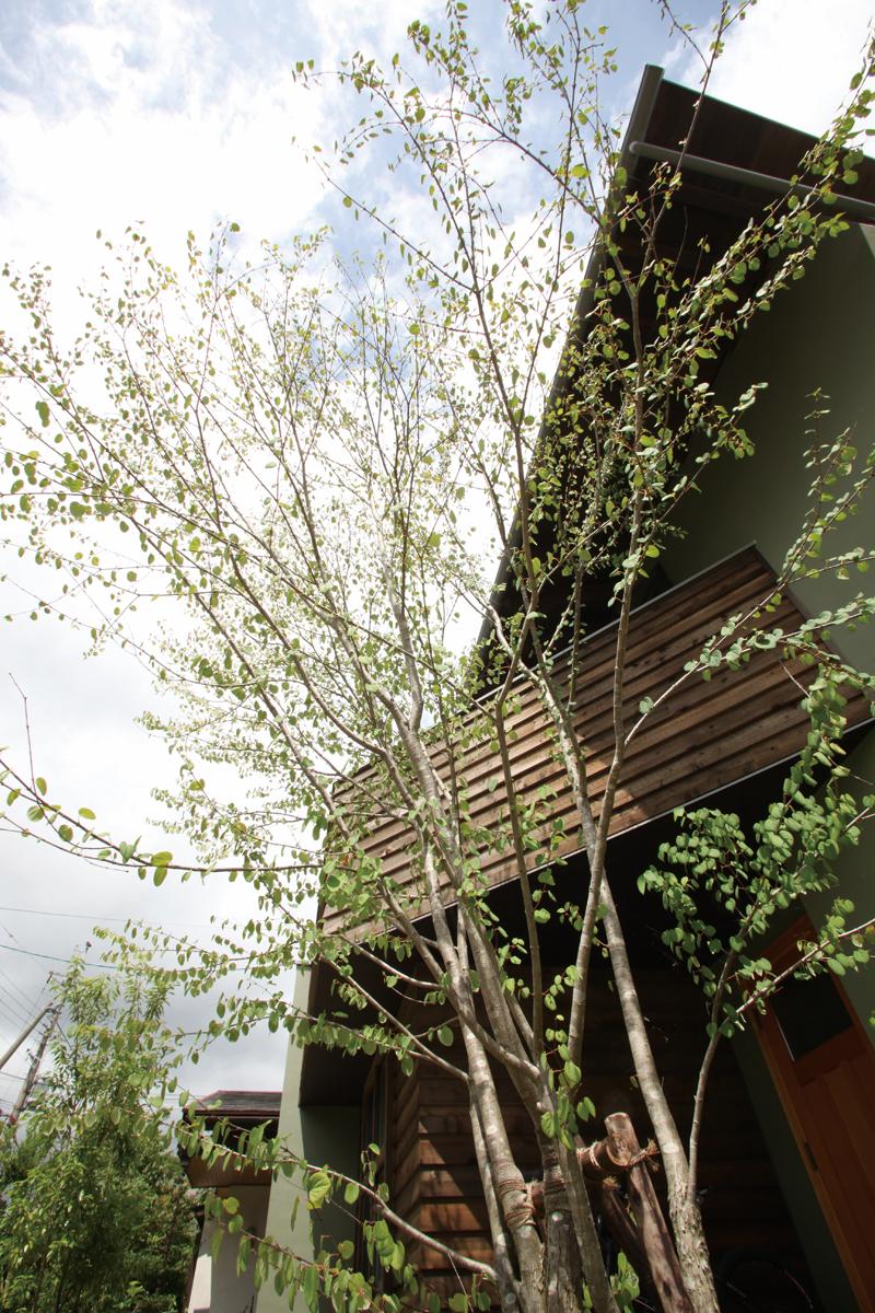 庭園設計・施工・管理 MI邸新築外構(滋賀県大津市)