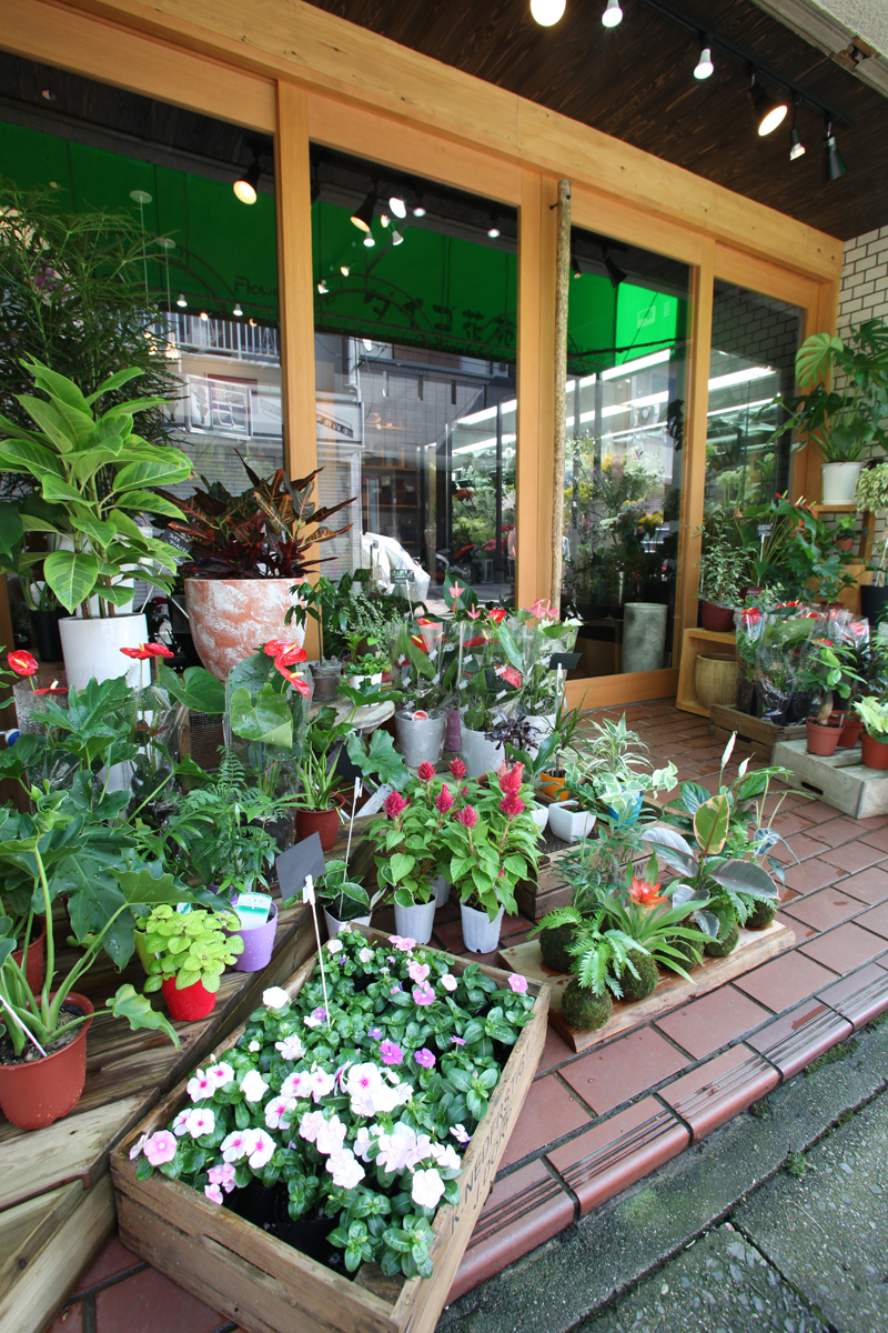 リノベーション施工事例|ダイゴ花苑(○○県○○市)