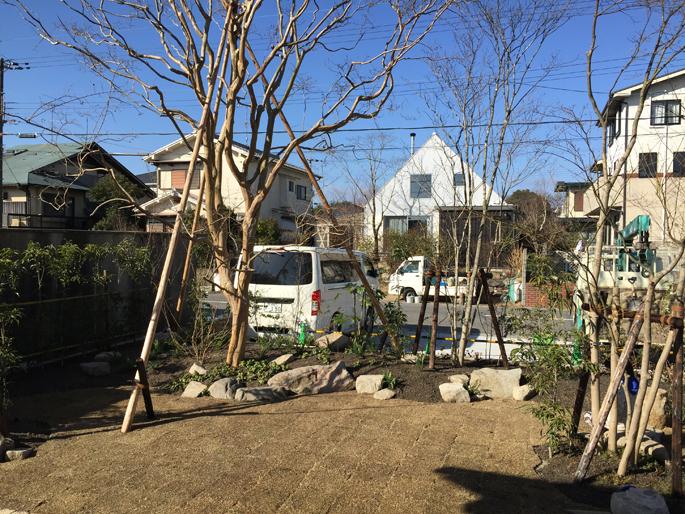 シンボルツリーのあるお店(滋賀県大津市)