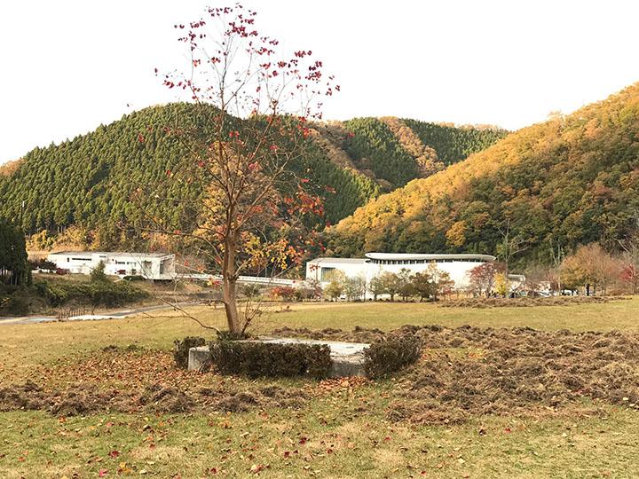 山と隣接するお庭の下準備~防獣フェンス設置~